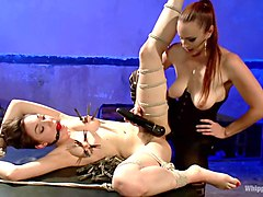 bdsm of shocking babe enjoying all fetish things