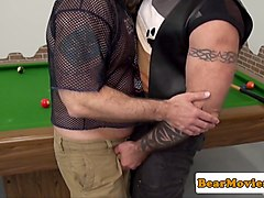 Dominant muscle bear assfucks chubby mature
